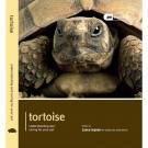 Pet Expert. Tortoise